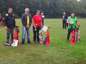 Uspešen mesec za naše tekmovalce šolanih psov