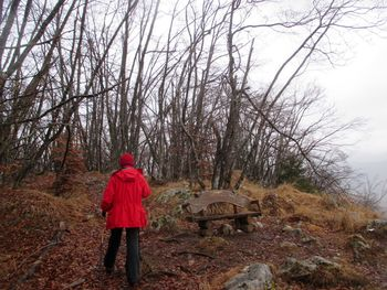 Planinski izlet na Rudnico