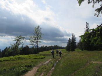 Planinski pohod po SPP od Koče Planinc na Pohorju do Raduhe