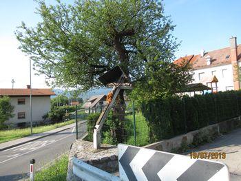 Porušeno znamenje sredi Notranjih Goric