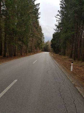 Čiščenje podrastja ob cestah
