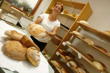 Ogled primera dobre prakse in delavnica o pridelavi žit