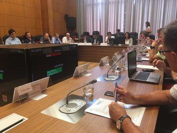 Župani, gospodarstveniki in predstavniki nevladnih organizacij o razvojnih projektih regije