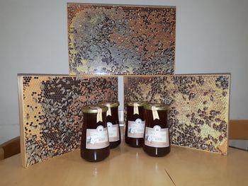 Tradicionalni slovenski zajtrk, teden gorenjskih jedi in obisk čebelarjev v OŠ Preddvor