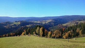 Planinsko društvo Poljčane vabi