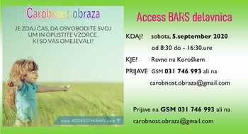 Access Bars delavnica * Ravne na Kor.