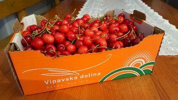 Povabilo kmetovalcem k naročilu promocijske embalaže 'Vipavska dolina sočna. Vse leto.'