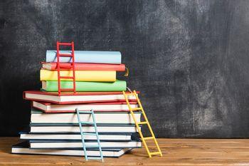 Tanja Černe: Razvijanje meta kognitivnih spretnosti, posebej pri učencih z učnimi težavami