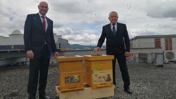 Svetovni dan čebel sta obeležila minister Zajc in župan Prebil