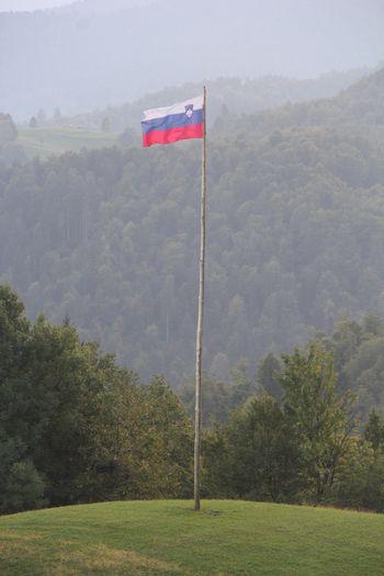 Slovenska zastava v čast domovini