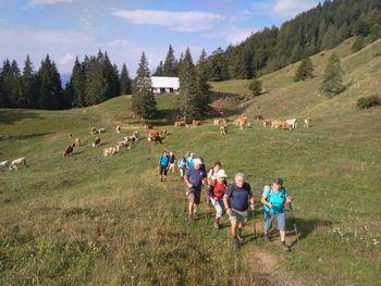 Pohod DU na Hruško planino