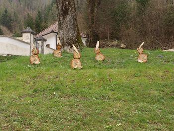 V Kokri se pasejo velikonočni zajčki