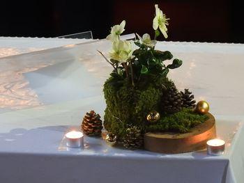 Božično - novoletni koncert in prihod Dedka Mraza
