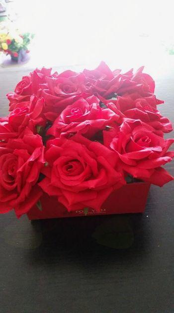 Rože na dom