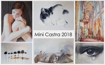 Mini Castra 2018