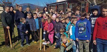 Drevesa povezala Ljudsko univerzo Ajdovščina in krajevne skupnosti