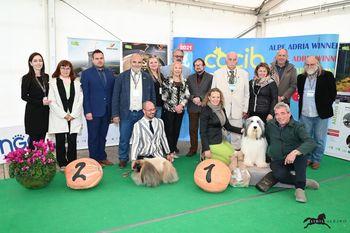 Prvič v zgodovini mednarodna razstava psov vseh pasem na Krasu