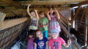 Počitniški tabor za otroke v medgeneracijskem centru Hiša Sadeži družbe Logatec