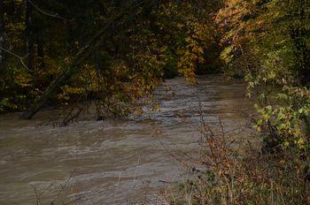 CITARUM - najbolj onesnažena reka na svetu, PŠATA - najčistejša v Sloveniji?