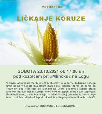 LIČKANJE KORUZE 2021