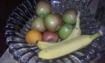 Prehrana in imunski sistem