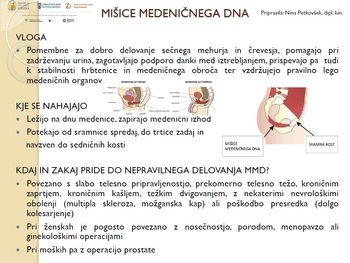 VAJE za krepitev mišic medeničnega dna