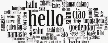 Inštrukcije tujih jezikov
