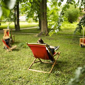 Poletje v travi