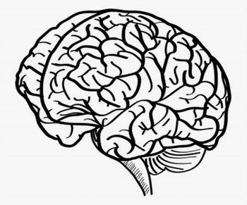 Aerobika možganov –zabavna delavnica za krepitev spomina