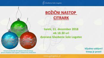 Božični koncert citrark