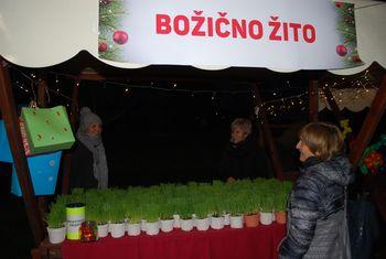 12. tradicionalni dobrodelni bazar