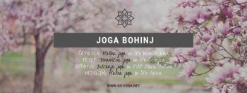 Joga v Bohinju