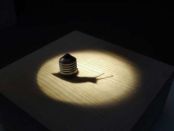 Svetlobna gverila: Resničnost