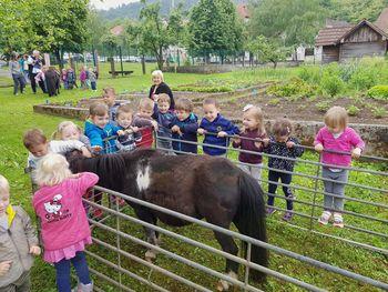 Jahanje ponija v vrtcu Borovnica