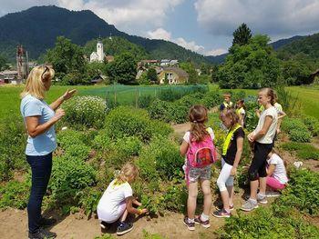 Obisk zeliščnega vrta