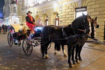 Dedek Mraz v prestolnico z vrzdenškimi konji