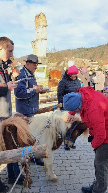 Tradicionalni blagoslov konj tudi v Borovnici