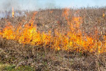 Povečana nevarnost požarov v naravi