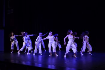 Območna plesna revija Vija vaja