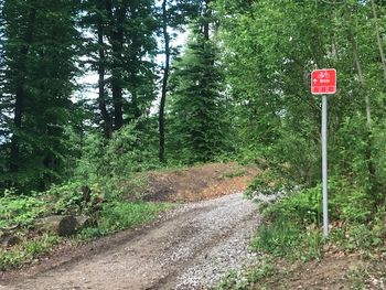 Prejeli smo: Gozdovi niso za avte in motoriste ter sebične kolesarje