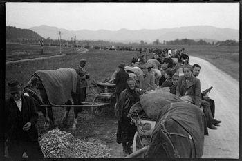 Bil sem na poti slovenskih beguncev