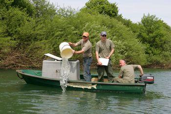 Koliko je dovolj za ohranitev življenja v naši reki?