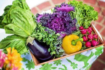 KUD Kosec – Pomoč pri pridelovanju domače kvalitetne hrane