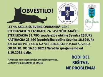 Skrb za živali - akcija sterilizacij in kastracij lastniških muc v občini Sevnica