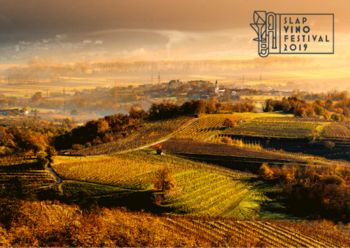 Prvi Slap Vino festival