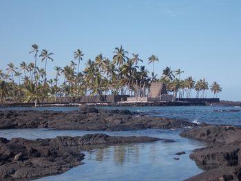 Potopis: Življenje na Havajih