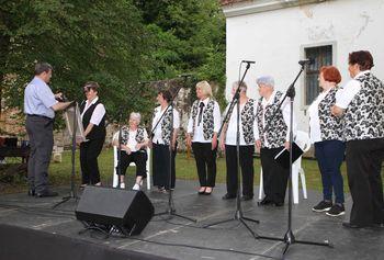 Srečanje malih vokalnih skupin, voden ogled dvorca,  razstava ...