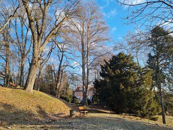 Urejanje poti v parku Šenek
