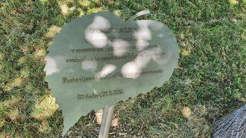 Praznovanje dneva državnosti in 30-letnice samostojnosti Slovenije