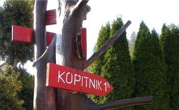 KOPITNIK, 910 m